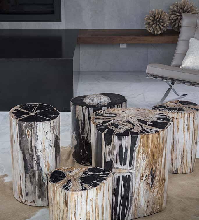 Custom Petrified Wood Tables In Solana Beach Ca Amp San