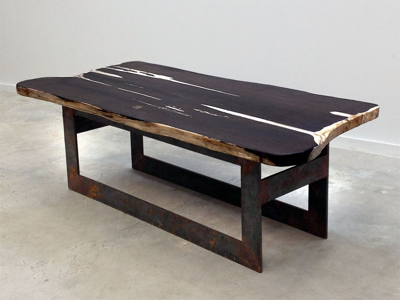 Petrified wood coffee table, single element slab with custom steel base